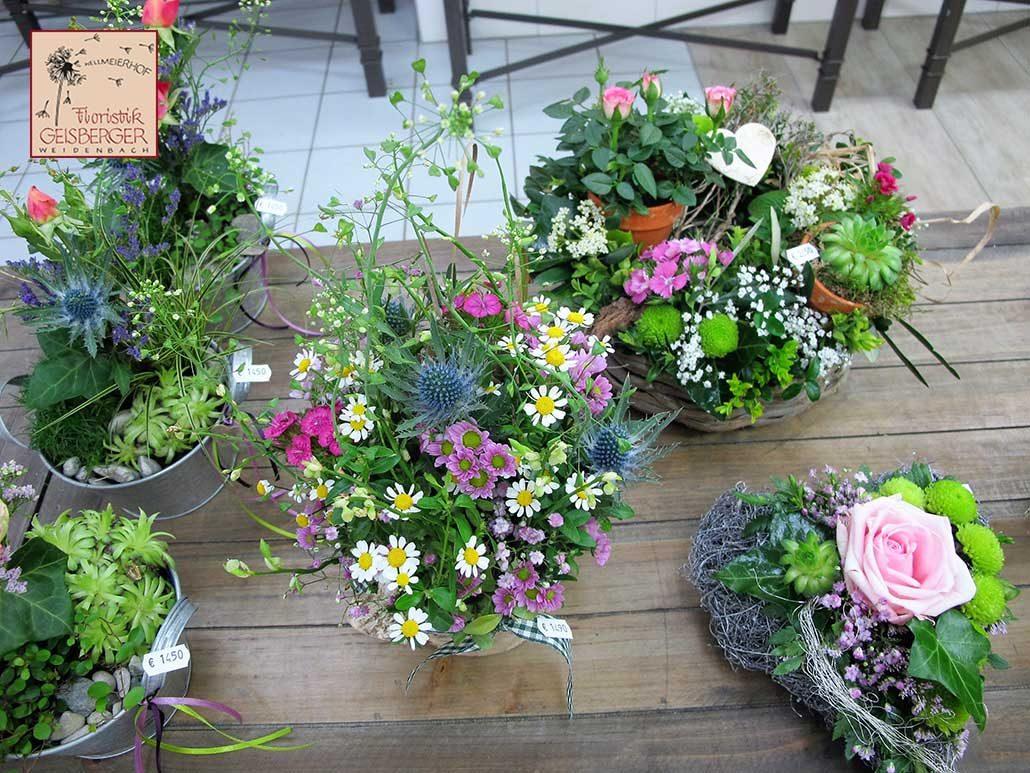 blumen, planzen, wohn- und raumdekorationen | floristik geisberger